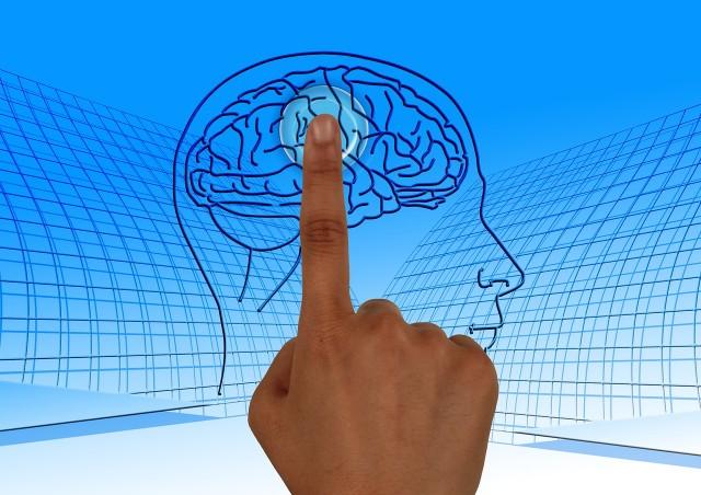 Infocurse - brain